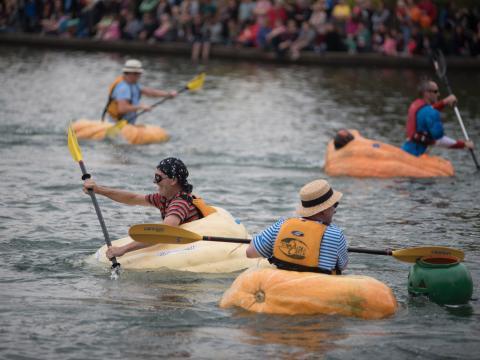 Participants padding in pumpkins during the West Coast Giant Pumpkin Regatta in Tualatin, Oregon